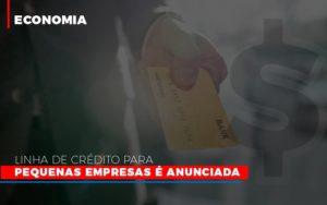 Linha De Credito Para Pequenas Para Pequenas Empresas E Anunciada Notícias E Artigos Contábeis - Contabilidade em São Paulo | Catana Assessoria Empresarial
