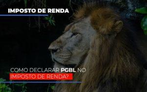 Ir2020:como Declarar Pgbl No Imposto De Renda Notícias E Artigos Contábeis - Contabilidade em São Paulo | Catana Assessoria Empresarial