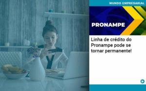 Linha De Credito Do Pronampe Pode Se Tornar Permanente - Contabilidade em São Paulo | Catana Assessoria Empresarial