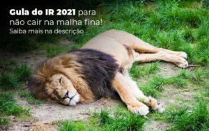 Guia Ir 2021 Para Nao Cair Na Malha Fina Saiba Mais Na Descricao Post 1 - Contabilidade em São Paulo | Catana Assessoria Empresarial