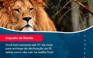 Voce Tem Somente Ate 31 De Maio Para Entrega Da Declaracao De Ir Saiba Como Nao Cair Na Malha Fina 1 - Contabilidade em São Paulo | Catana Assessoria Empresarial