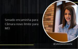Senado Encaminha Para Câmara Novo Limite Para Mei Catana Empresarial - Contabilidade em São Paulo | Catana Assessoria Empresarial