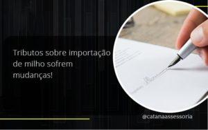 Veja Como Encerrar Corretamente Uma Empresa Inativa. Catana Empresarial - Contabilidade em São Paulo | Catana Assessoria Empresarial