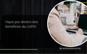 Fique Por Dentro Dos Beneficios Da Lgpd Catana Empresarial - Contabilidade em São Paulo   Catana Assessoria Empresarial